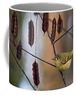 Cuteness Coffee Mug by Gary Holmes