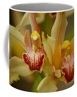 Cymbidium Twins Coffee Mug