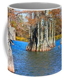 Cypress Birdhouse  Coffee Mug