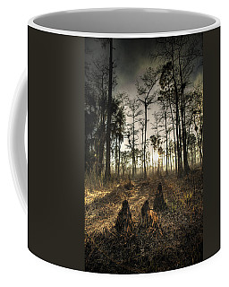 Cypress Stumps And Sunset Fire Coffee Mug by Bradley R Youngberg