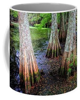 Cypress Waltz Coffee Mug