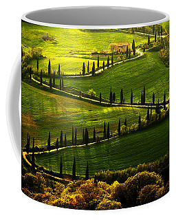 Cypresses Alley Coffee Mug