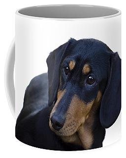 Dachshund Coffee Mug by Linsey Williams