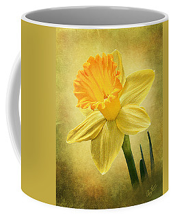 Daffodil Coffee Mug by Ann Lauwers