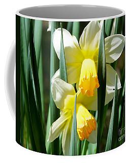 Daffodil Hug Coffee Mug