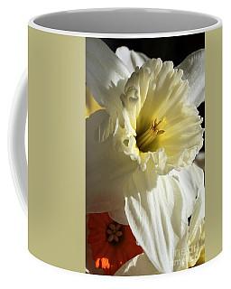Daffodil Still Life Coffee Mug