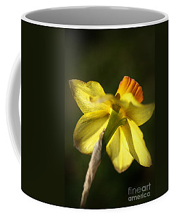 Coffee Mug featuring the photograph Daffodils Grace by Joy Watson