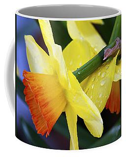 Coffee Mug featuring the photograph Daffodils With Rain by Joe Schofield