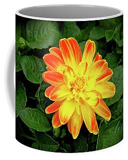 Dahlia Coffee Mug by Ed  Riche
