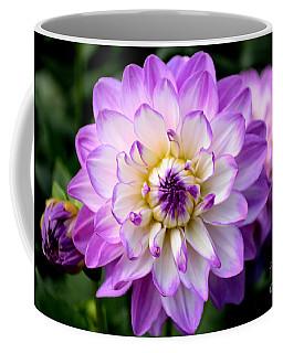Dahlia Flower With Purple Tips Coffee Mug