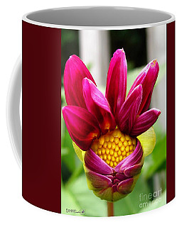 Coffee Mug featuring the photograph Dahlia From The Showpiece Mix by J McCombie