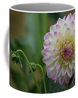 Dahlia In The Mist Coffee Mug by Jeanette C Landstrom