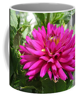 Coffee Mug featuring the photograph Dahlia Named Andreas Dahl by J McCombie