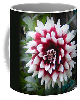 Coffee Mug featuring the photograph Dahlia by Sandra Estes