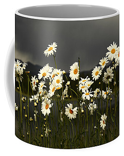 Daisies In Storm Light Coffee Mug