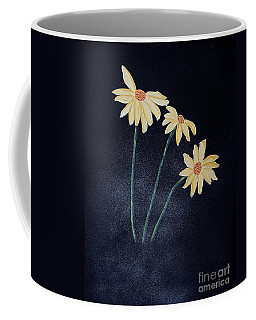 Daisies In The Mist Coffee Mug