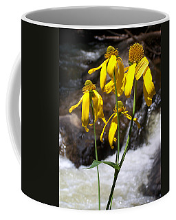 Daisies Near The Water  Coffee Mug