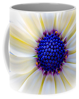 Daisy Centre Coffee Mug by Keith Hawley