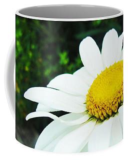 Coffee Mug featuring the photograph Daisy Daisy by Tiffany Erdman