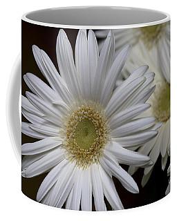 Daisy Photo Coffee Mug