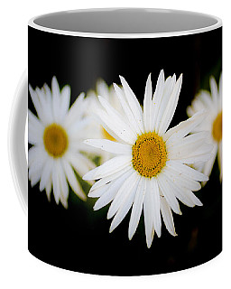 Daisy Trio Coffee Mug