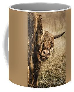 Highland Cow Damn Fleas Coffee Mug