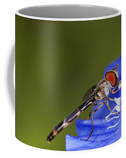 Damselfly 2 Coffee Mug