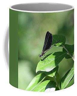 Coffee Mug featuring the photograph Damselfly  by Karen Silvestri