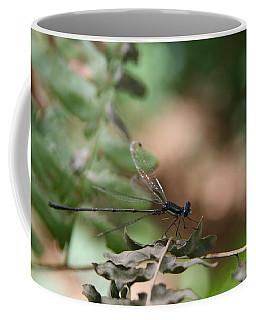 Damselfly Coffee Mug by Neal Eslinger