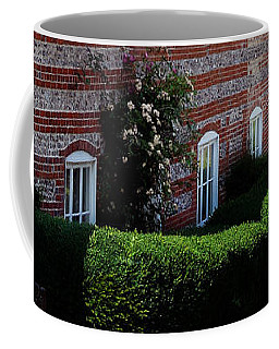 Dane Cottage Nether Wallop Coffee Mug