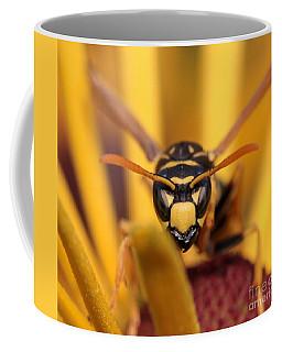 Danger Stare Coffee Mug by Kenny Glotfelty