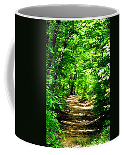 Dappled Sunlit Path In The Forest Coffee Mug