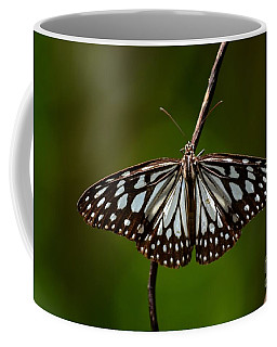Dark Glassy Tiger Butterfly On Branch Coffee Mug