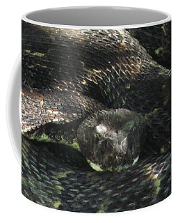 Dark Phase Timber Coffee Mug
