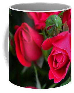 Dark Pink Roses #1 Coffee Mug