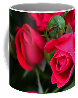 Dark Pink Roses #1 Coffee Mug