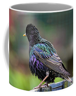 Darling Starling Coffee Mug