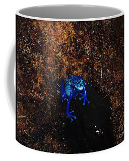 Dart Frog Coffee Mug