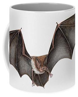 Daubentons Bat Myotis Daubentonii - Murin De Daubenton-murcielago Ribereno-vespertilio Di Daubenton Coffee Mug