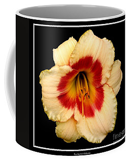 Coffee Mug featuring the photograph Daylily 3 by Rose Santuci-Sofranko