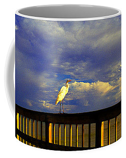 Daytona Beach Fl Bird Sun Glow Pier  Coffee Mug