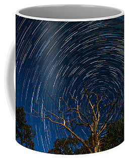 Dead Oak With Star Trails Coffee Mug by Paul Freidlund