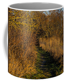 december light - Leif Sohlman Coffee Mug by Leif Sohlman