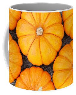 Decorative Pumpkins  Coffee Mug