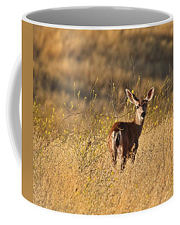 Coffee Mug featuring the photograph Deer by Beth Sargent