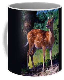 Coffee Mug featuring the photograph Deer In The Woods by Nick  Biemans