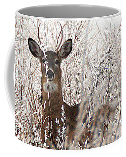 Coffee Mug featuring the photograph Deer In Winter by William Selander