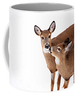 Deer Kisses Coffee Mug