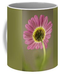 Delicate Daisy Coffee Mug