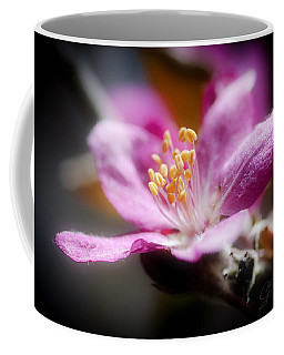 Delicate Glow Coffee Mug